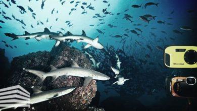 fotocamera subacquea offerte