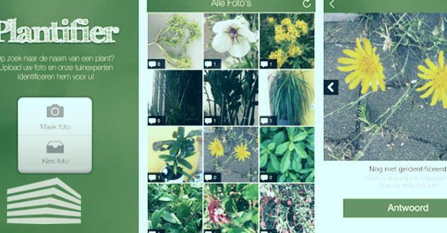 app per conoscere le piante