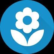 App per riconoscere le piante, fiori e alberi